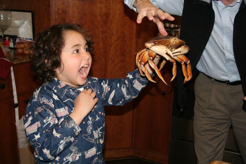 Live Crab-3