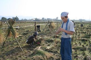 The Japanese Farmer-6